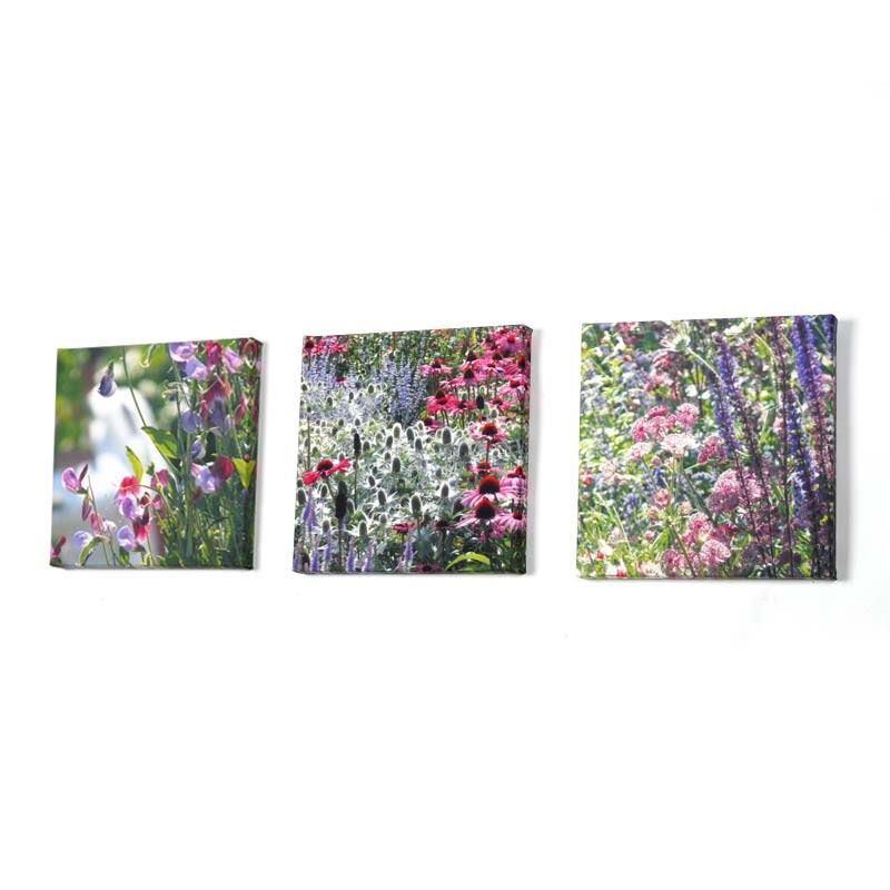 Mini Canvas Prints Small Photo